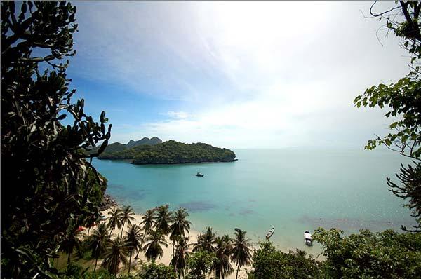 อุทยานแห่งชาติหมู่เกาะอ่างทอง, หมู่เกาะอ่างทอง, ที่พักหมู่เกาะอ่างทอง, แผนที่หมู่เกาะอ่างทอง, สถานที่ท่องเที่ยวหมู่เกาะอ่างทอง, ทะเลหมู่เกาะอ่างทอง, สุราษฎร์ธานี, ดำน้ำ, ปะการัง