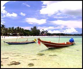 เกาะสมุย, ที่พักเกาะสมุย, แผนที่เกาะสมุย, สถานที่ท่องเที่ยวเกาะสมุย, ทะเลเกาะสมุย, ดำน้ำ, ปะการัง, สุราษฎร์ธานี