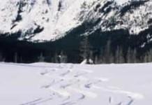 หิมะละลาย อุตสาหกรรมรู้สึกถึงความร้อน, บัวหิมะ, กรมส่งเสริมอุตสาหกรรม, นิคมอุตสาหกรรม, ภาวะโลกร้อน