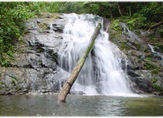 น้ำตกโตนช่องฟ้า, น้ำตก, ท่องเที่ยว, สถานที่ท่องเที่ยว, แหล่งท่องเที่ยว, น้ำตก, น้ำตกโตนช่องฟ้า, พังงา