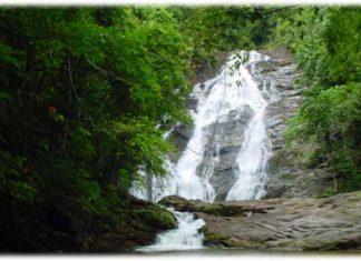 น้ำตกโตนไพร, น้ำตก, ท่องเที่ยว, สถานที่ท่องเที่ยว, แหล่งท่องเที่ยว, น้ำตก, น้ำตกโตนไพร, พังงา