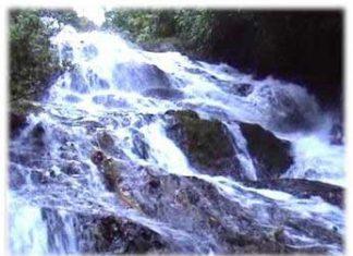 น้ำตกโตนต้นไทร, น้ำตก, ท่องเที่ยว, สถานที่ท่องเที่ยว, แหล่งท่องเที่ยว, น้ำตก, น้ำตกโตนต้นไทร, พังงา