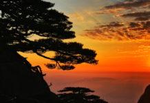 ภาพถ่าย, ภาพหลังทริป, มณฑลอันฮุย, เซี่ยงไฮ้, เขาหวงซาน, สนรับแขก, ทะเลสาบซีหู, หางโจว, มณฑลเจ้อเจียง, หอไข่มุก