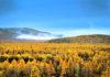 ต้าซิ่งอันหลิง, พื้นที่ต้าซิ่งอันหลิง, 大兴安岭区, มณฑลเฮยหลงเจียง,黑龙江省, ท่องเที่ยวจีน, สถานที่ท่องเที่ยวในประเทศจีน, หมู่บ้านเป่ยจี๋ชุน