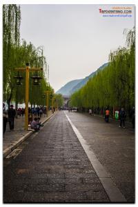 shanxi-159