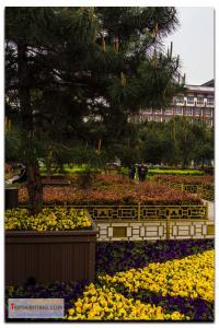 shanxi-227